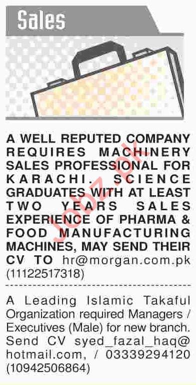 Dawn Sunday Newspaper Sales Classified Jobs 03/02/2019