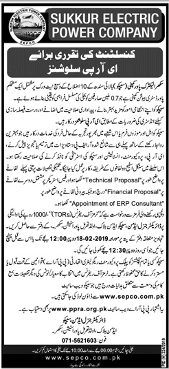 Sukkur Electric Power Company Consultant Jobs 2019