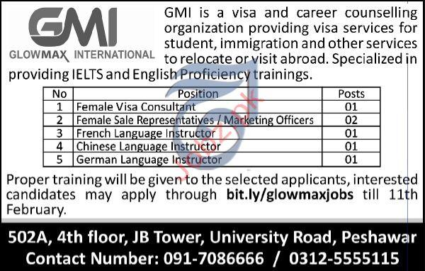 Visa Consultant Jobs in Glowmax International