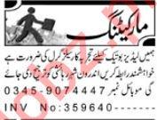 Salesgirl Jobs 2019 in Peshawar
