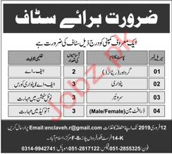 Patwari Surveyor & Draft Man Jobs in Private Company