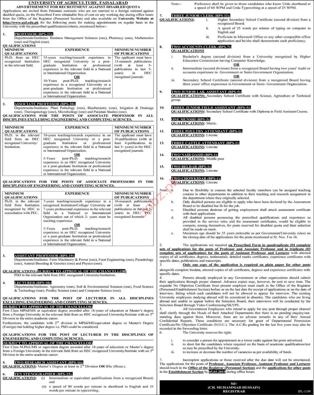 University of Agriculture Jobs 2019