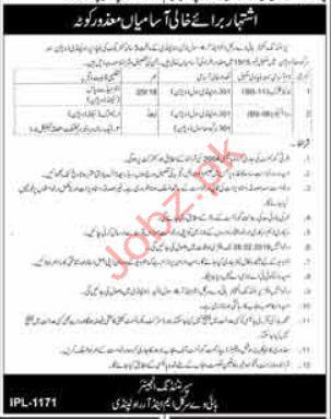 Driver & Junior Clerk Jobs in Highway Department