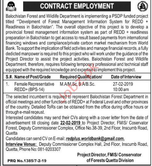 Balochistan Forest & Wildlife Department Jobs 2019