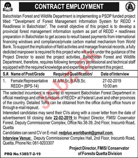 Balochistan Forest & Wildlife Department Job 2019 in Quetta