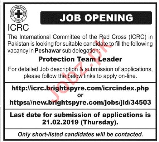 Protection Team Leader Jobs at ICRC