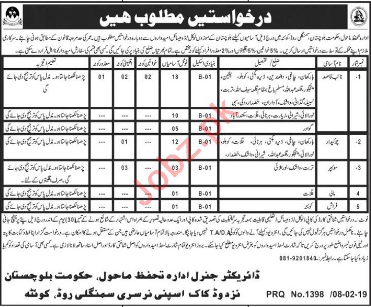 Environment Protection Department Baluchistan Naib Qasid Job