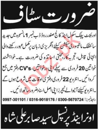 Orient Public School & College Mansehra Jobs 2019