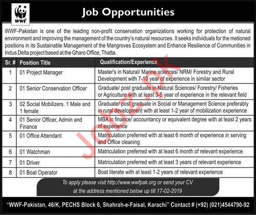 WWF Pakistan NGO Jobs 2019 in Karachi