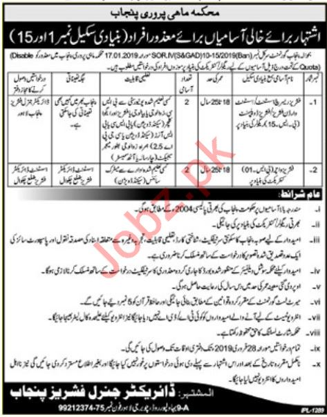 Irrigation Department Jobs For Lahore & Chakwal