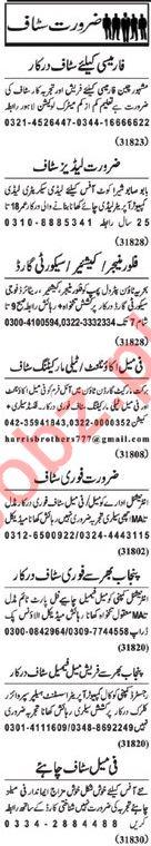 Nawaiwaqt Sunday Classified Ads 10th Feb 2019 Office Staff