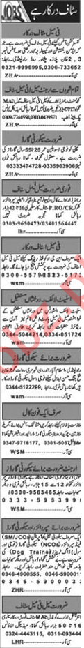 Male & Female Staff Jobs 2019 in Islamabad
