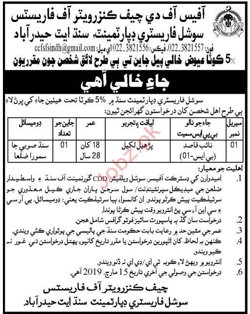 Chief Conservator of Forestry Naib Qasid Jobs 2019
