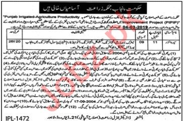 Agriculture Department Job 2019 For Supervisors in Lahore