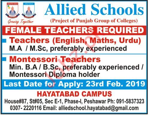 Allied Schools Hayatabad Campus Teaching Jobs 2019