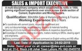 Disciplinary Engineering Firm Sales Executive Jobs