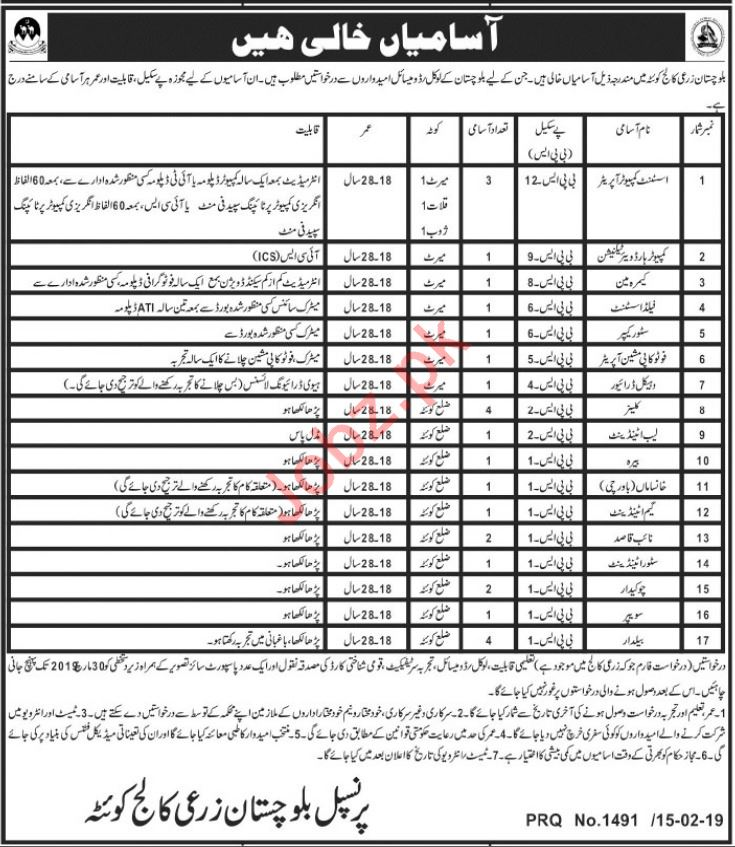 Balochistan Agriculture College Quetta Jobs 2019