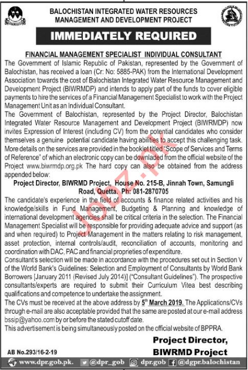 Financial Management Specialist, Consultant & Director Jobs