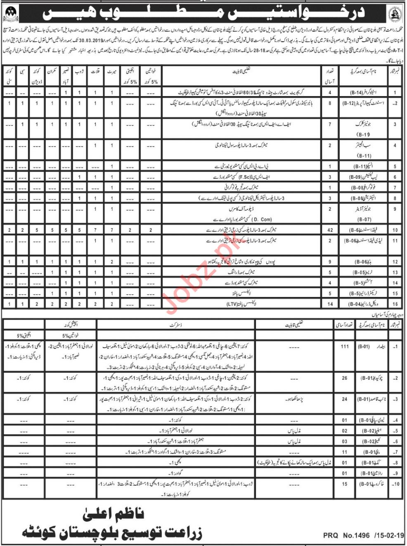 Agriculture Department Jobs 2019 in Quetta Balochistan