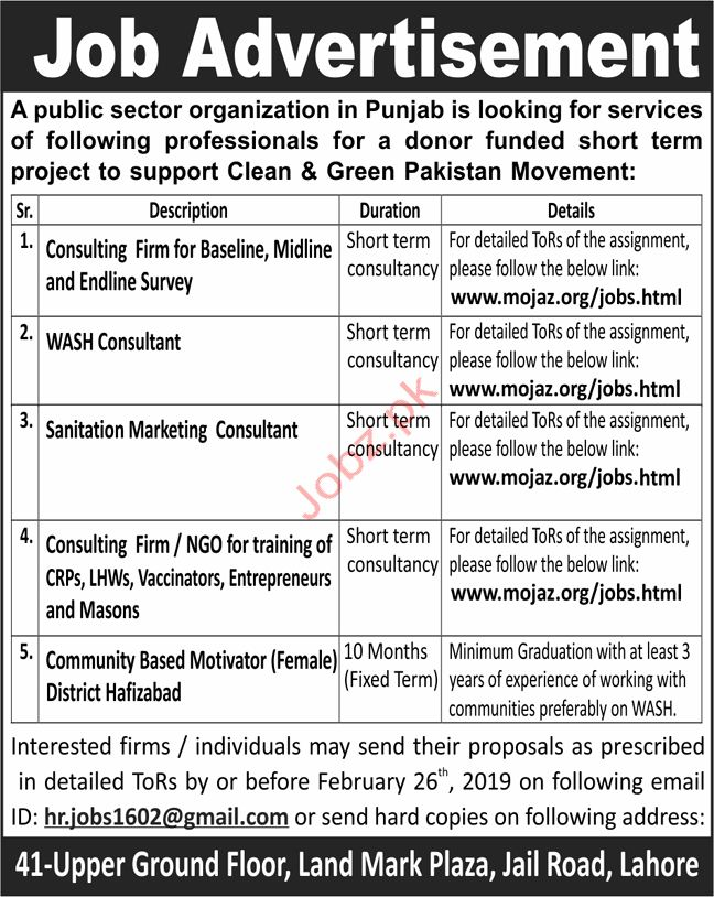Wash Consultant Jobs in Public Sector Organization