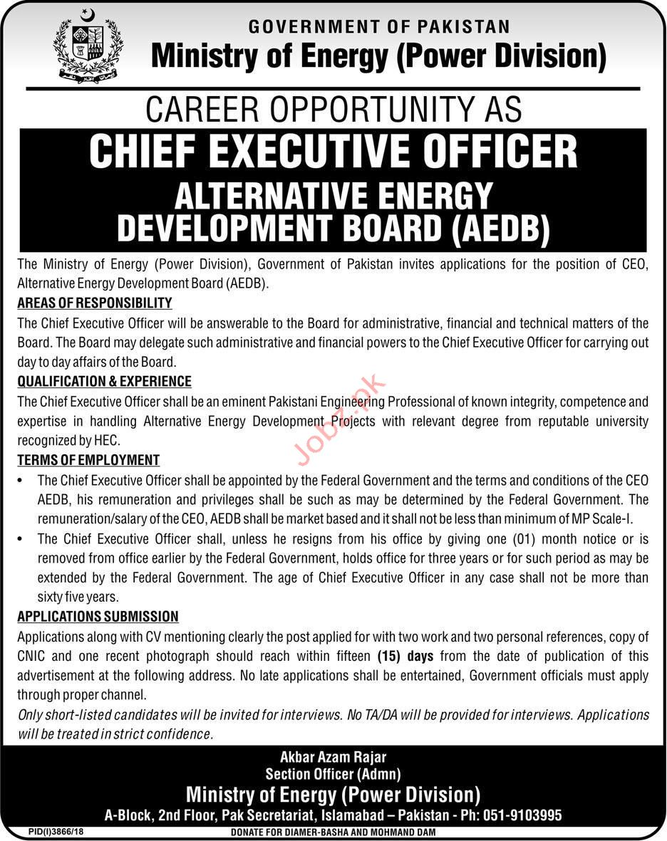 Chief Executive Officer Jobs in Power Division