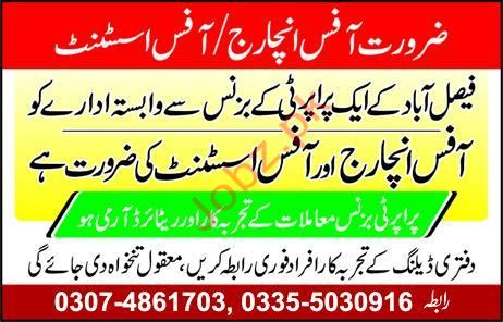 Office Staff Jobs in Property Office