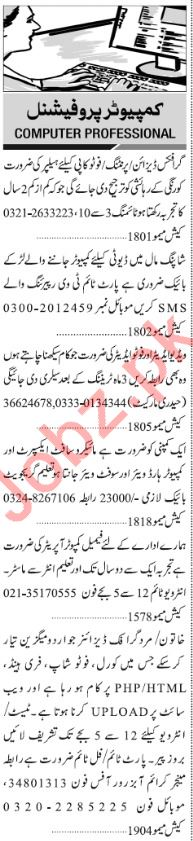 Jang Sunday Classified Ads 24th Feb 2019 for Computer Staff