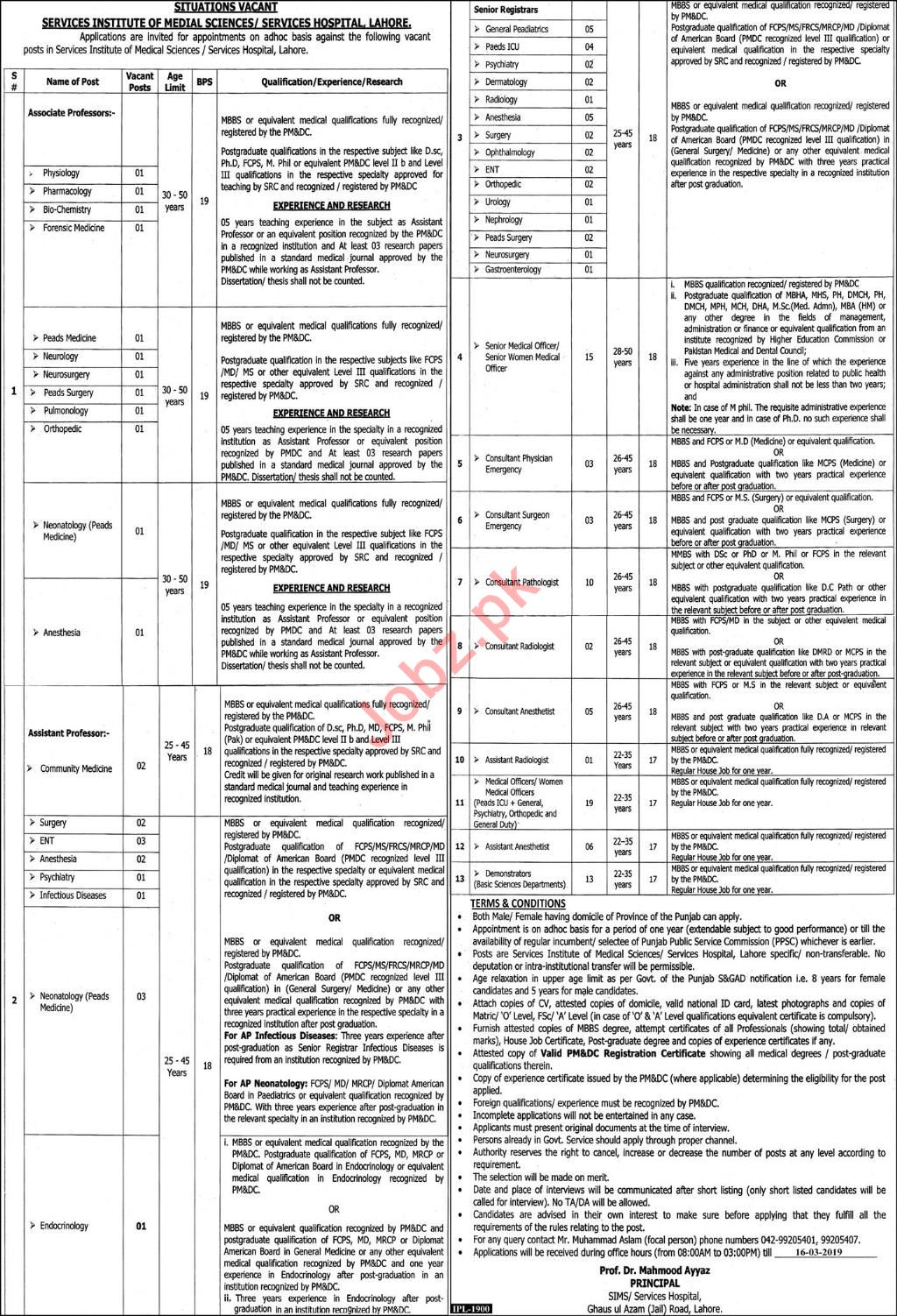 Services Hospital Lahore Jobs 2019 for Professors
