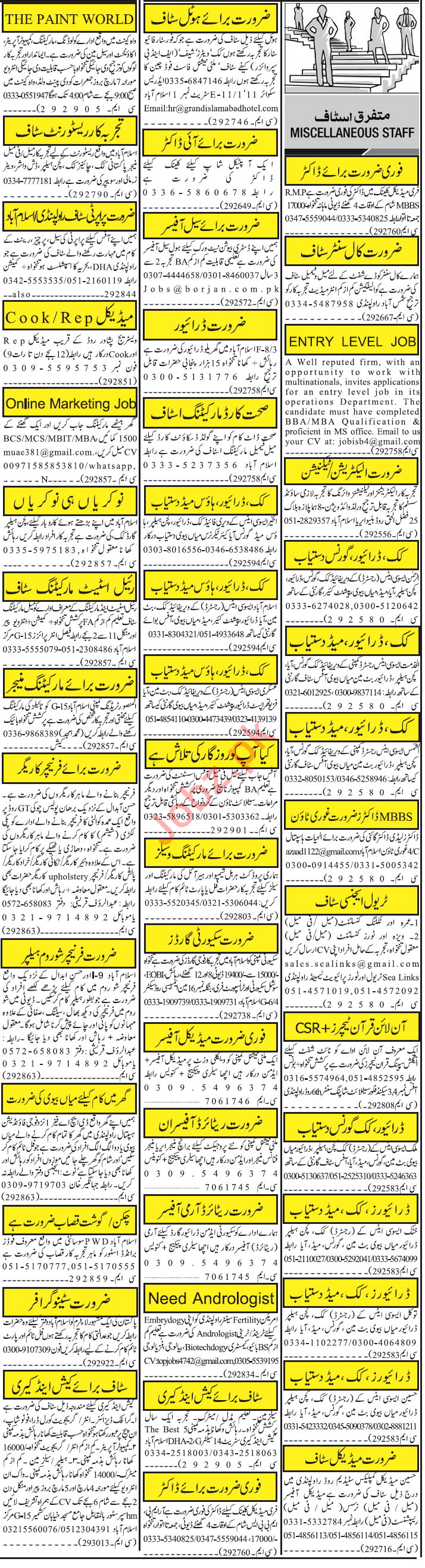 Jang Sunday RWP Classified Ads 3rd March 2019 Multiple Staff