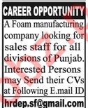 Sales Staff Jobs Career Opportunity in Lahore