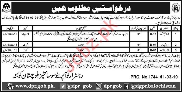 Agriculture Department Jobs 2019 in Quetta