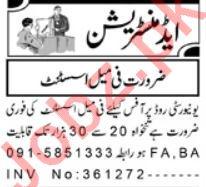 Female Assistant Jobs 2019 in Peshawar