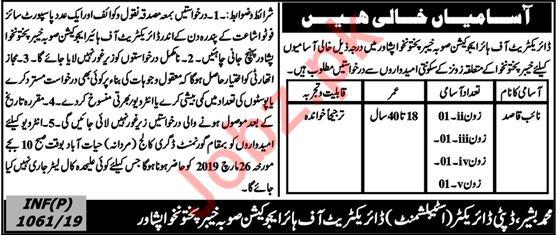 Higher Education Department Jobs 2019 For Peshawar KPK