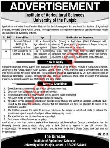 Research Officer Jobs in University of The Punjab