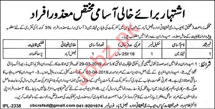 Ayub Agriculture Research Institute AARI Faisalabad Jobs