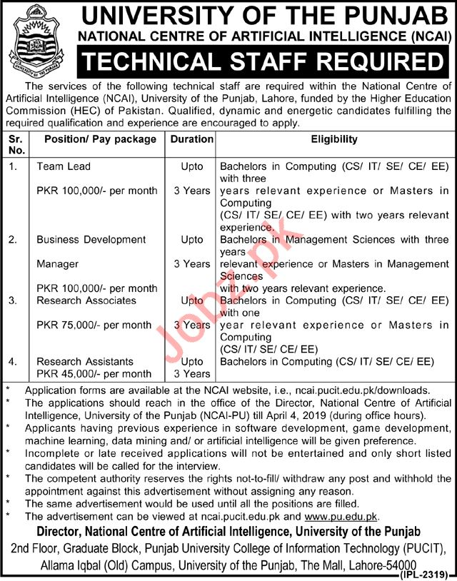 University of Punjab Management Staff Job 2019