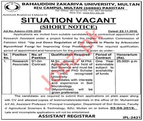 Research Associate Jobs in Bahauddin Zakriya University BZU - Latest