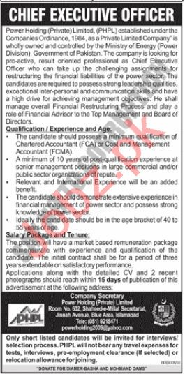 Power Holding Private Ltd Chief Executive Officer Job 2019