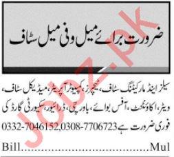Daily Jang Newspaper Classified Jobs 2019 In Multan