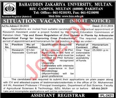 Research Associate Jobs in Bahauddin Zakriya University BZU