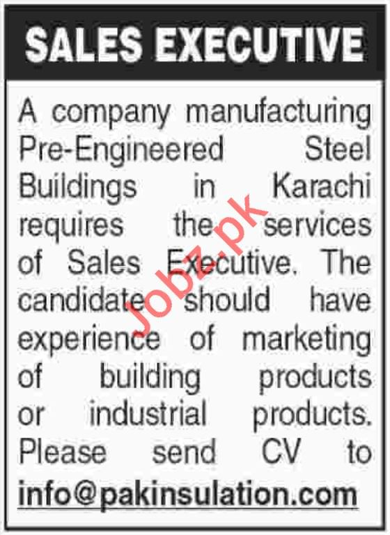 Sales Executive Jobs in Private Company