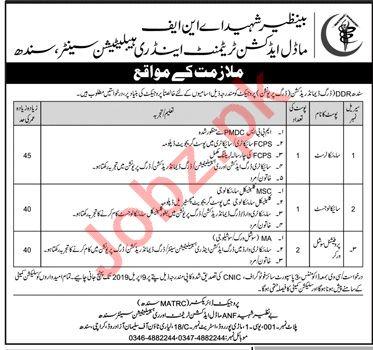 Benazir Shaheed ANF Management jobs in Karachi