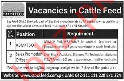 Big Feed Pvt Ltd Jobs 2019 in Peshawar & Karachi