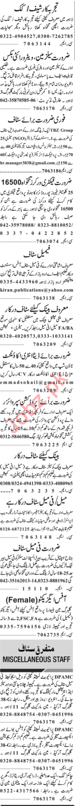 Jang Sunday Classified Ads 24th March 2019 Multiple Staff