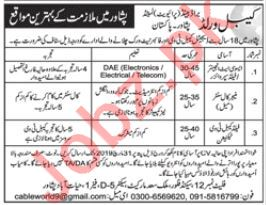 Cable World Brand Pvt Limited Technical Jobs in Peshawar KPK