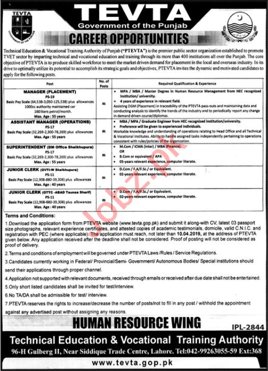TVETA Manager & Assistant Manager Job in Lahore