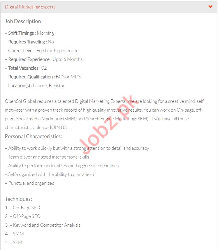 Digital Marketing Expert Jobs in  OpenSol Global Web Design