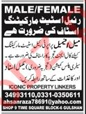 Real Estate Marketing Staff Jobs 2019
