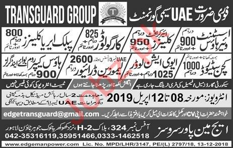 Assistant Warehouse, Aircraft Cleaner & Cargo Loader Jobs