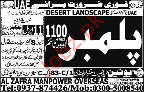 Desert Landscape Company Job 2019 in UAE